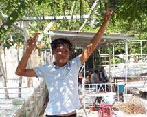 KTV Minh Phụng